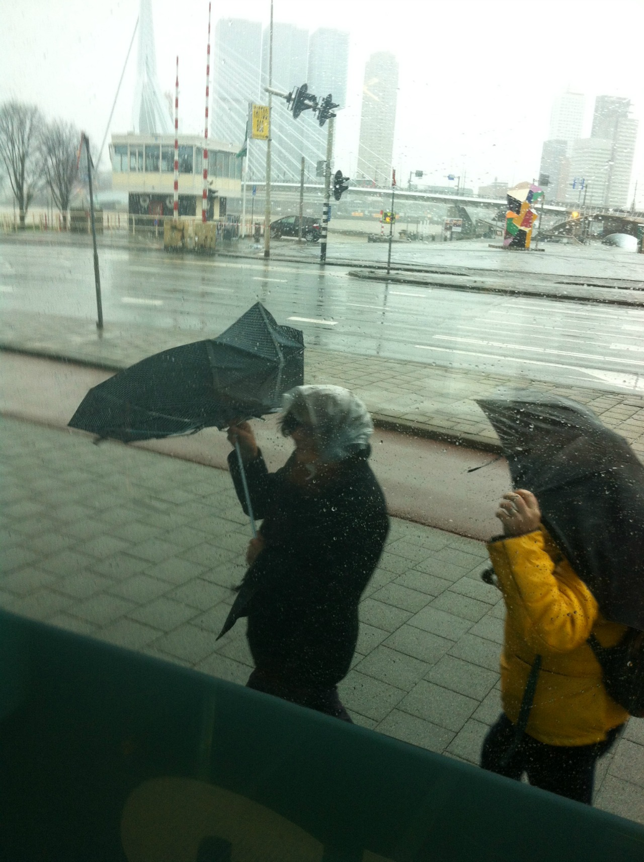 Rotterdamstorm