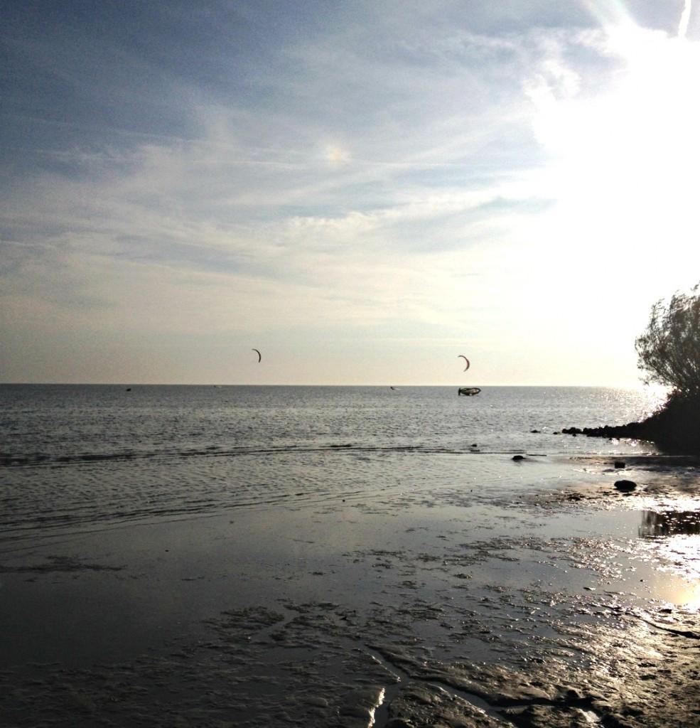 Rijsterbos-IJsselmeer
