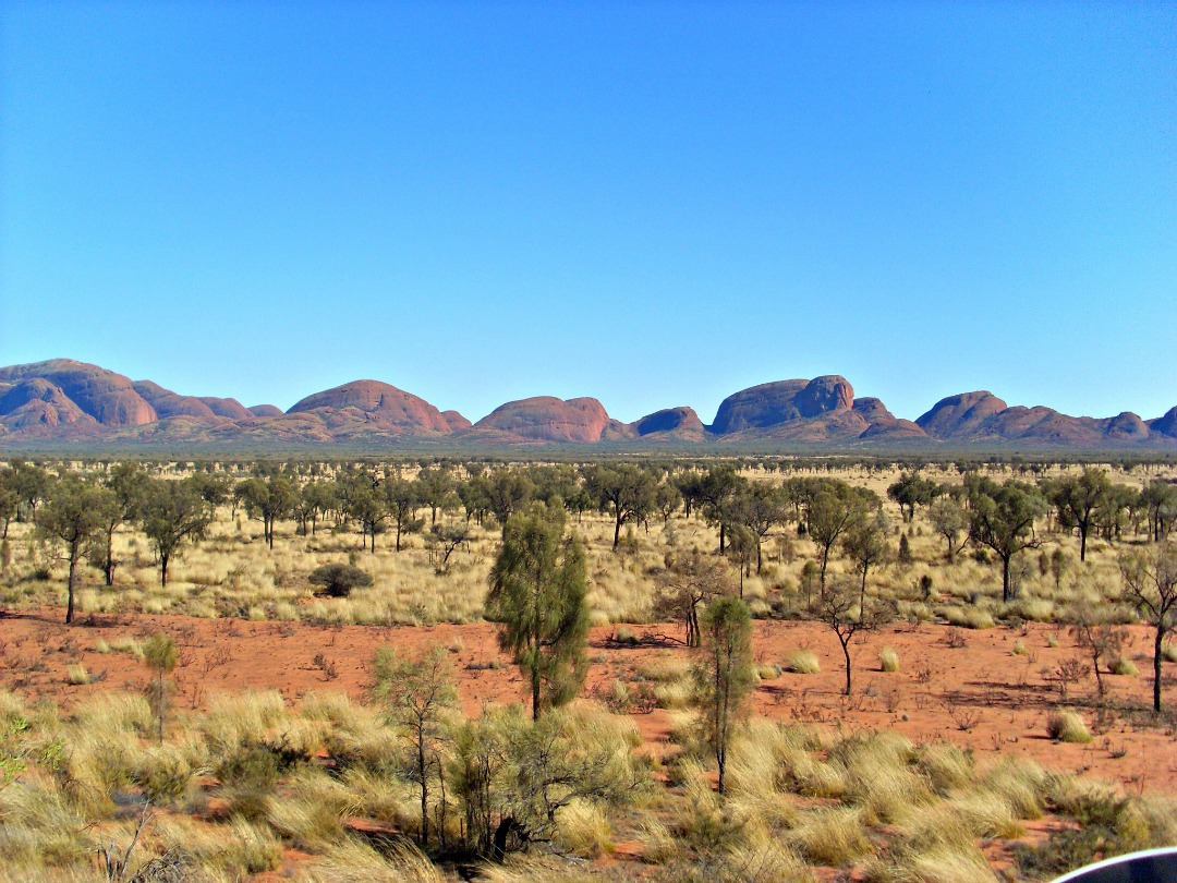 Alice springs tour | Bezoek de Uluru, Kata Tjuta en Kings Canyon
