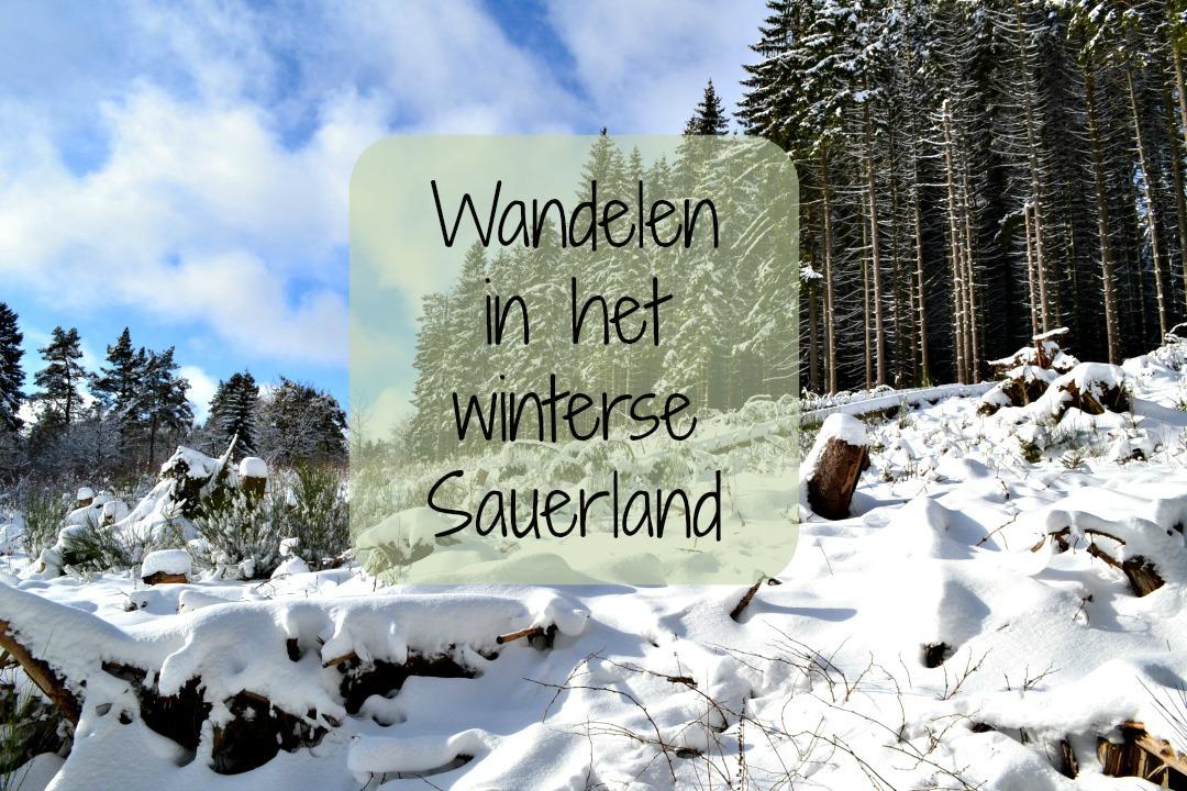 Wandelen in Sauerland