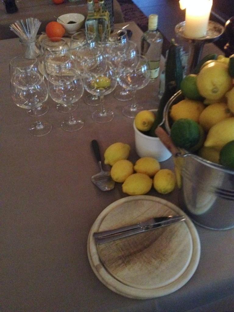 Gin-tonic-training