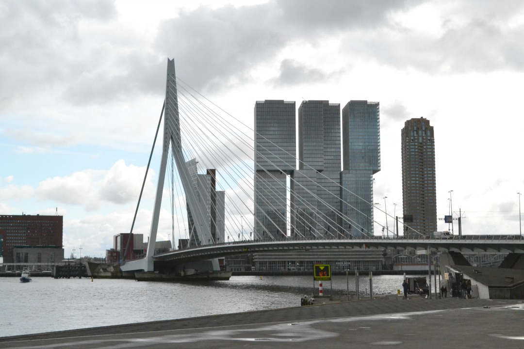 Rotterdam top of flop?